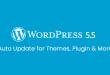 Wordpress 5.5 New Security Features