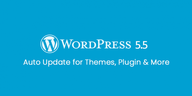 Wordpress 5.5 New Security Features
